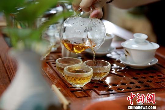 广东名茶将首次设专场拍卖 十大名茶齐登场